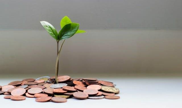 LEEF: fonds voor duurzame energie-initiatieven Heerenveen